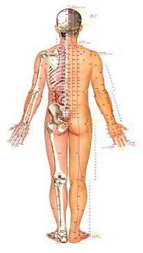 Как улучшить метаболизм для похудения
